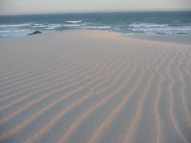 Sand_dune_ripples